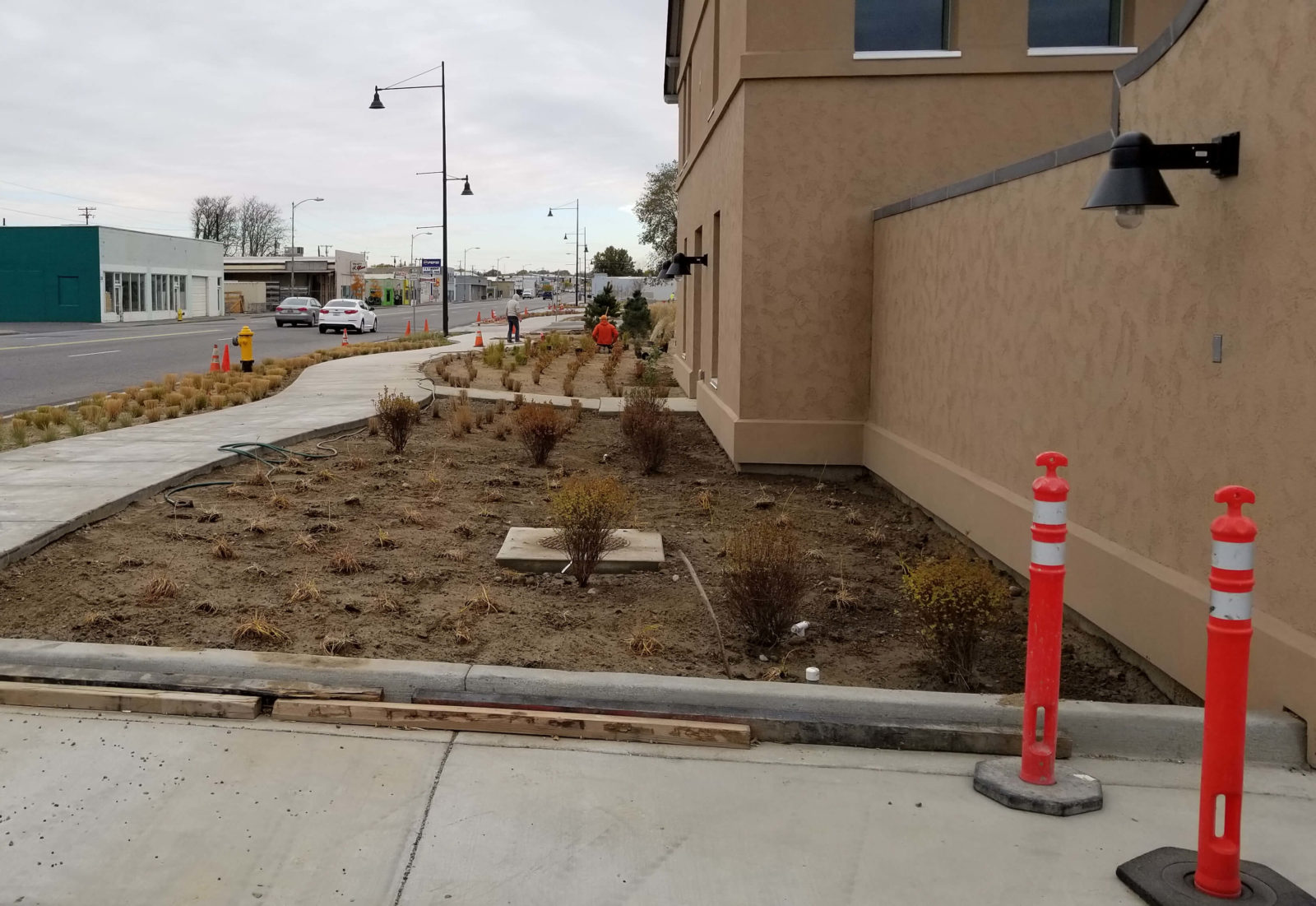 Installing plants for Columbia Gardens Phase 1 landscape.