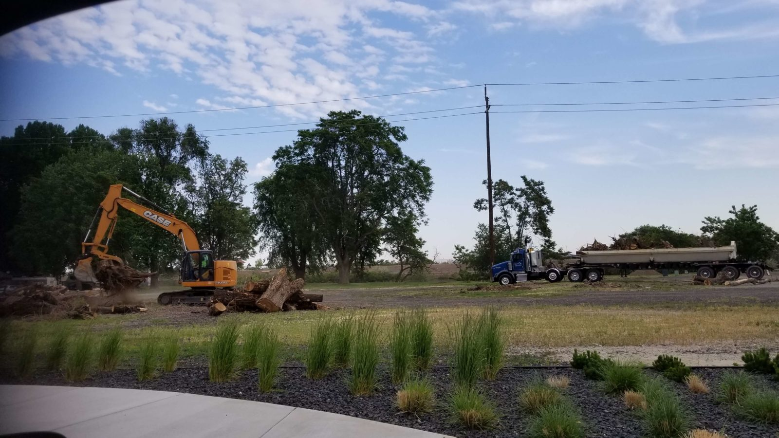 Construction equipment removing trees in preparation for winery building.