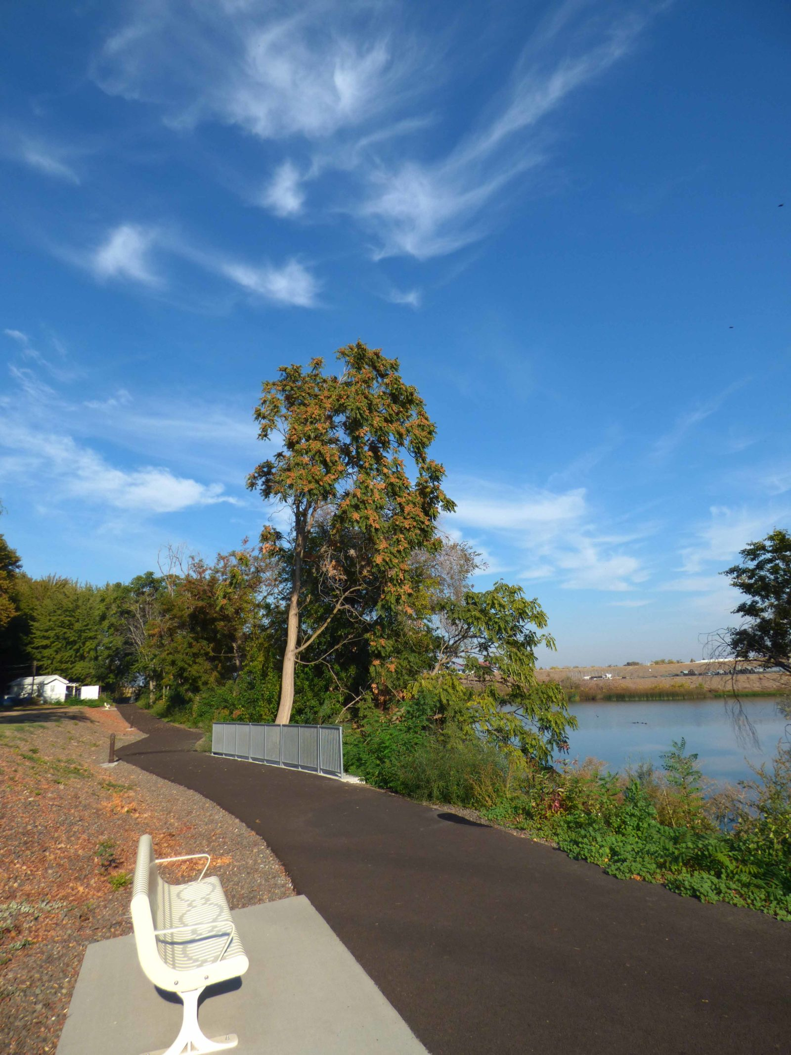 Completed public trail between the pond and Columbia Gardens.