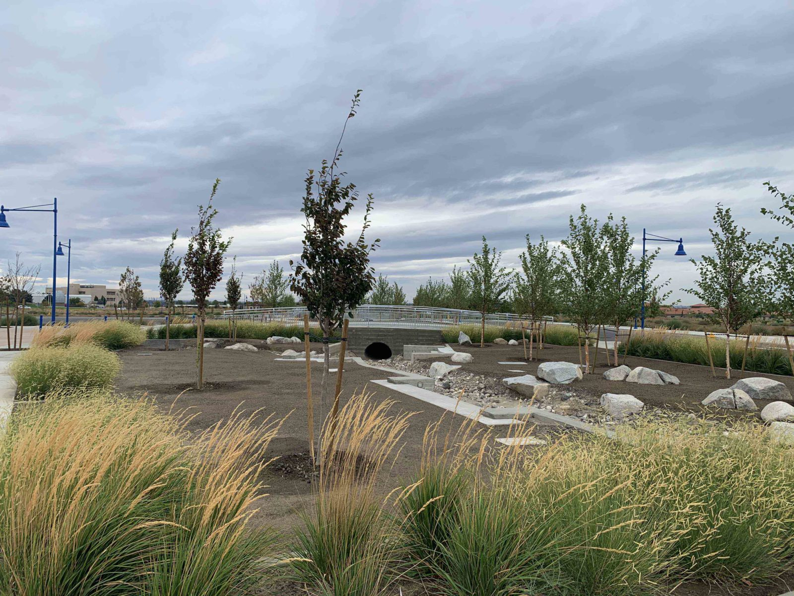Landscaping and water feature at Vista Field - phase one redevelopment.