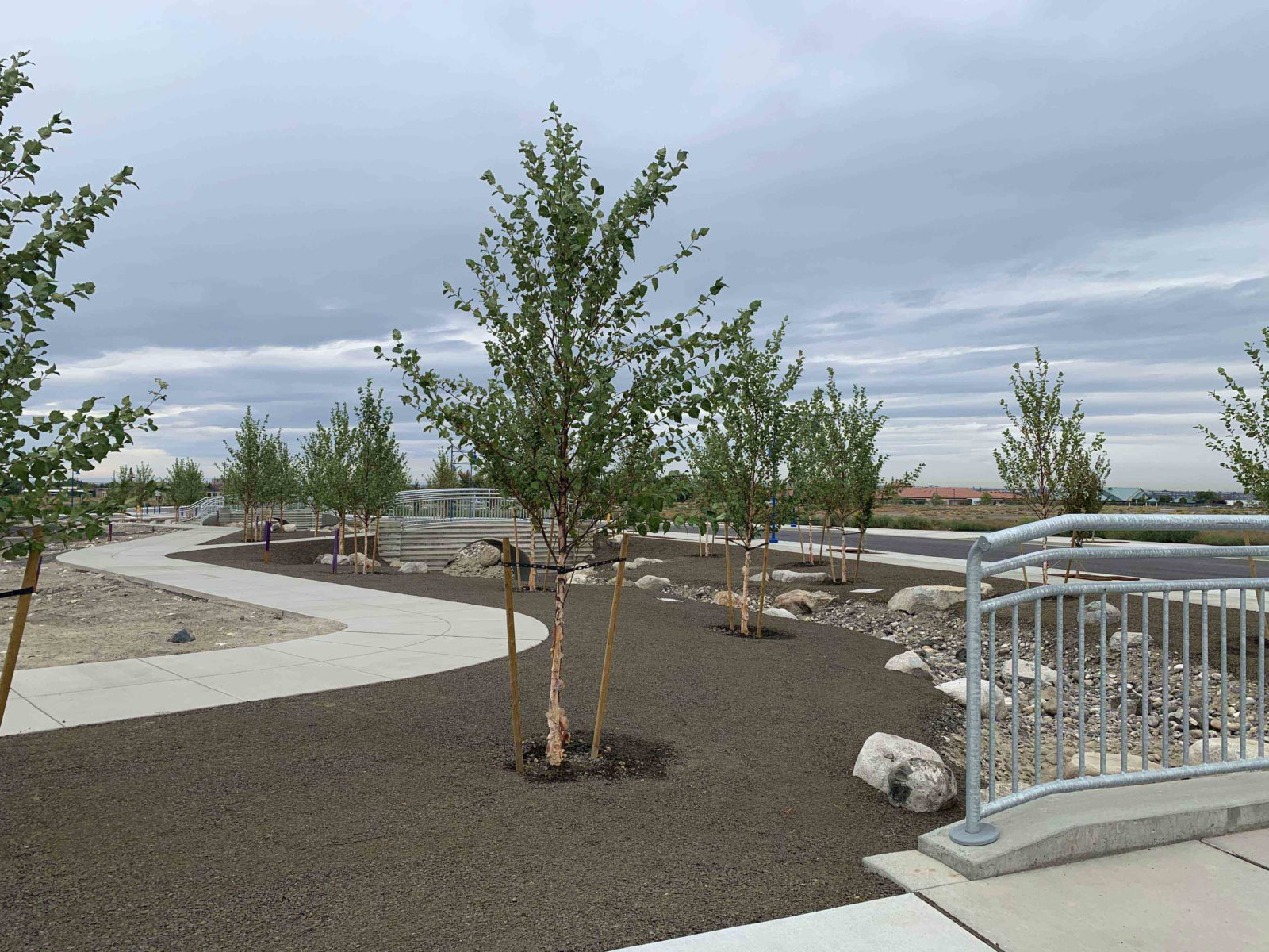 Tree lined walking path at Vista Field - phase one redevelopment.